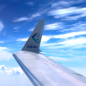 gepäck adria airways