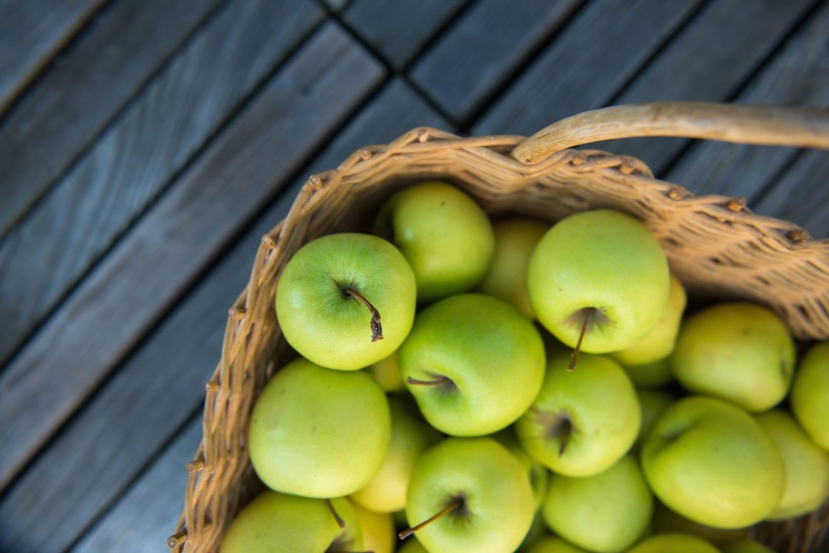 Slovenian Apples_www.slovenia.info_Nea Culpa