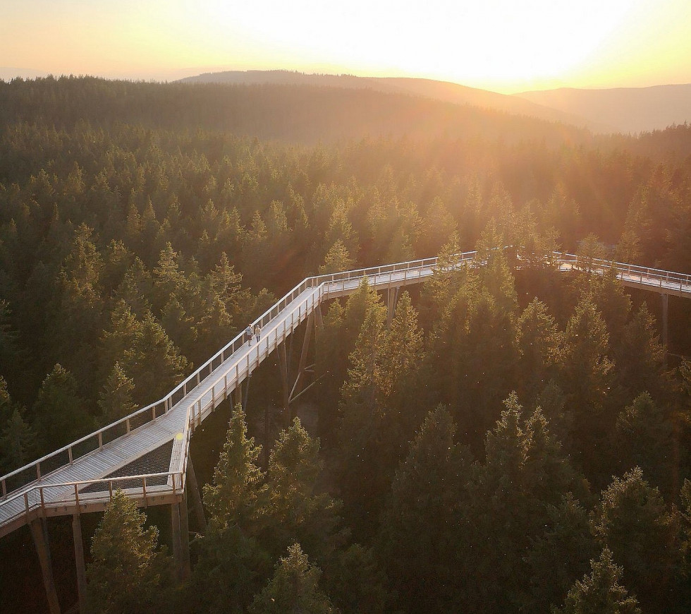 The Pohorje Treetop Walk, photo by UKOM