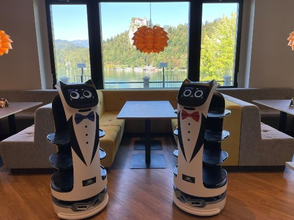 Tone and Pavla, the friendly robot helpers at the Park Café in Bled